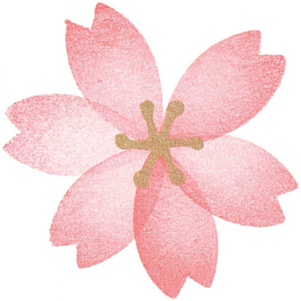 Moosgummistempel Set Blumen